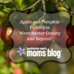 Westchester County Moms Blog Guide to Apple and Pumpkin Picking