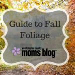 Westchester County Moms Blog Guide to Fall Foliage
