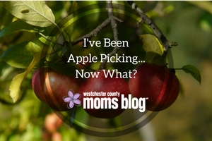 ive-been-apple-picking-now-what_