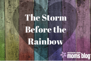 the-storm-before-therainbow