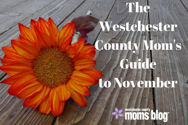 the westchester county moms guide to november