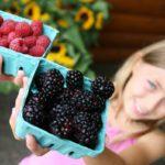 Farmer's Market Joys and 7 Tips for the Savvy Shopper