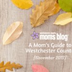 A Mom's Guide to Westchester County :: November 2017