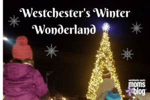 esterchester's Winter Wonderland