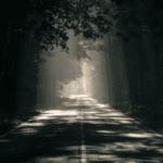 Driving in the dark… Meet Kanan!