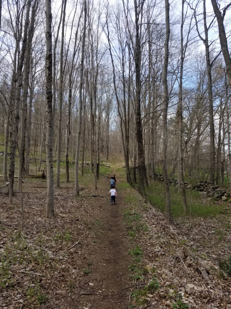 Hiking in Northern Westchester
