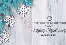 Westchester events in January.
